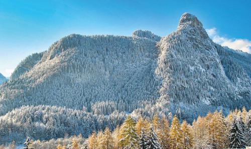 November:Kruse AndreasErster-Schnee