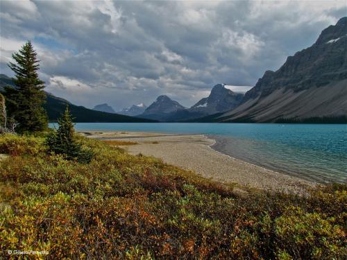 Herbst am Bow Lake - Kanada