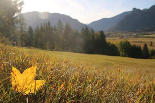 Ammertal im Herbst