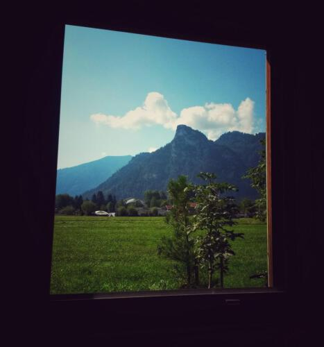 Fenster ins Ammertal