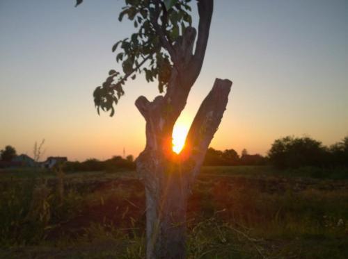 Sonnenuntergang in Dobanovci